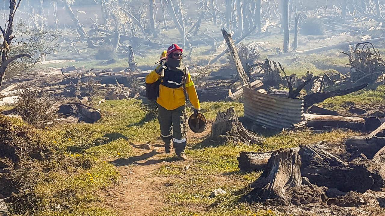 incendio forestal3