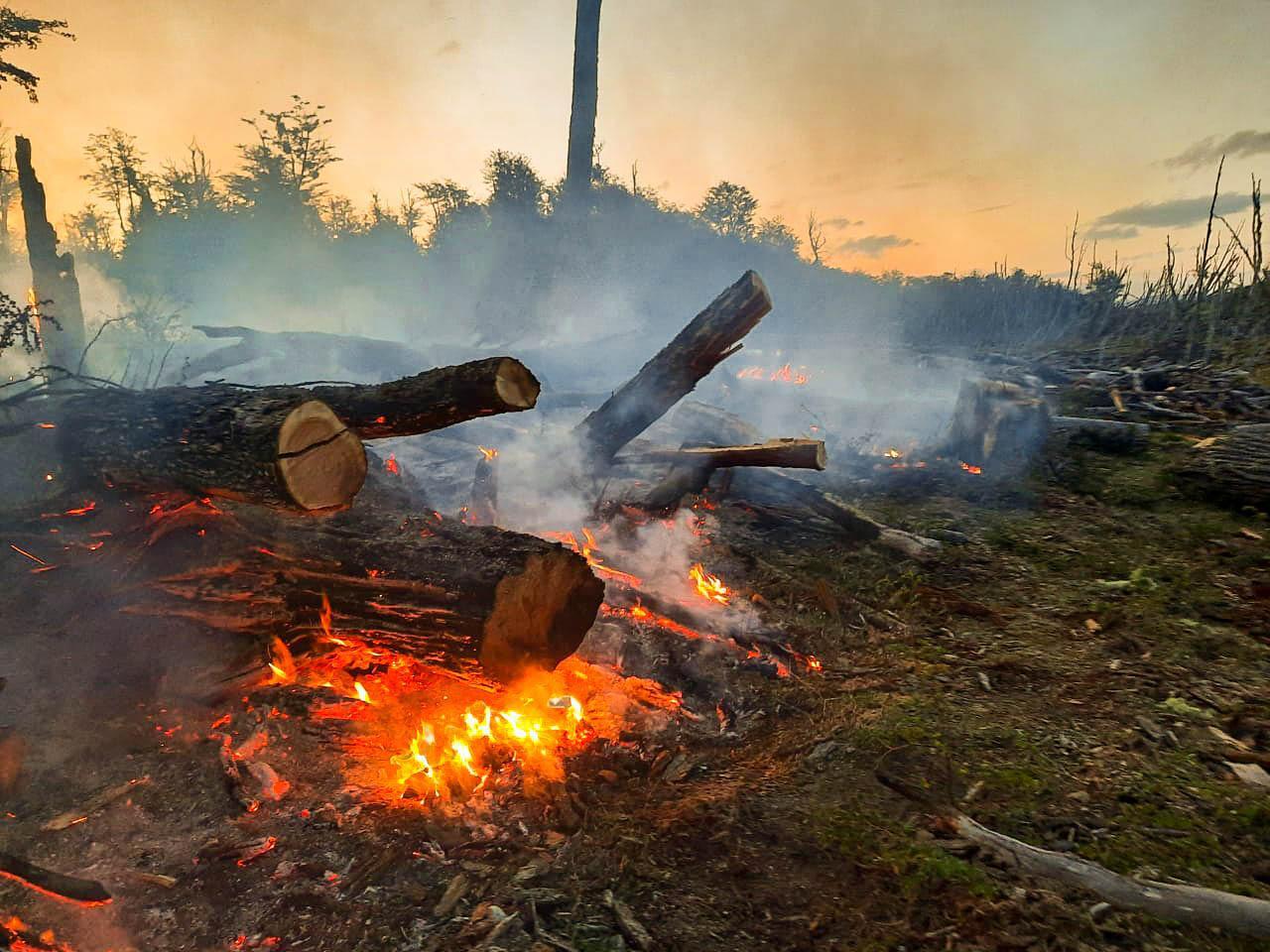 incendio forestal2