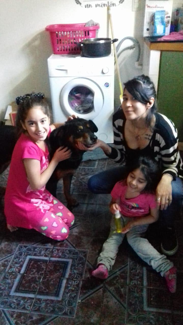 Zoonosis adopcion